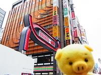 2月18日歌舞伎町.jpg