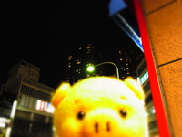 2月26日 本八幡.JPG