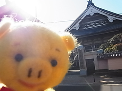 3月25日浅草.JPG